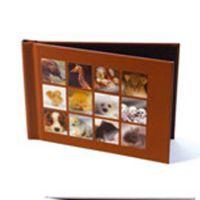 Lot de 20 pochettes albums animaux